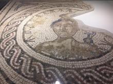 Mosaic from the Antiquarium